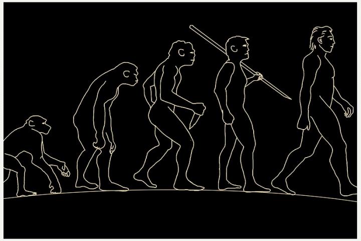 Homo Luzonensis: La nueva especie humana descubierta