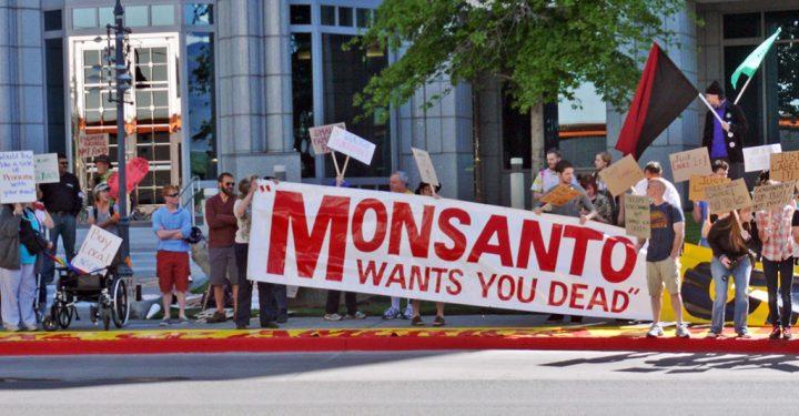 Ambiente tóxico para Monsanto-Bayer