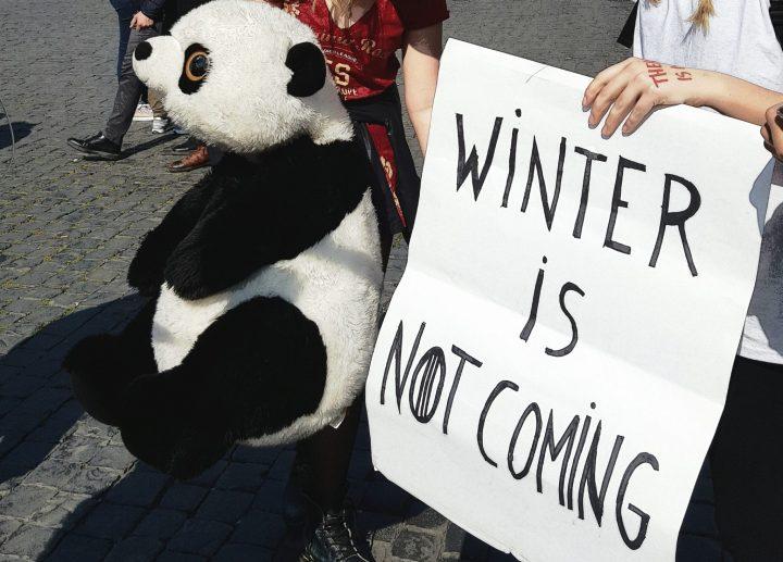 Emergenza climatica: cosa sta facendo l'Europa?