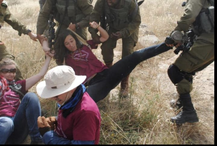 Anti-occupation coalition grows stronger in the face of Israeli military violence
