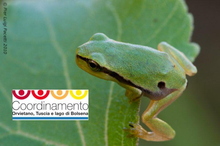Biodiversità: proteggiamo il tesoro de La Renara