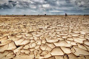 Journée de l'environnement. ISPRA : baisse de 17,5% de la production de CO2 en Italie