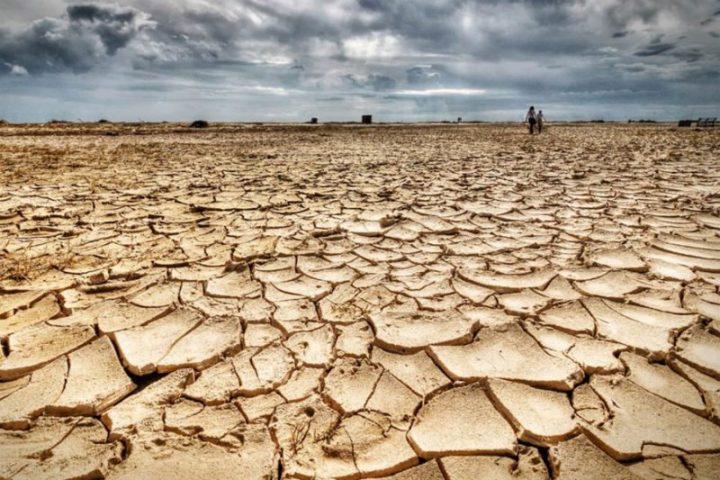Día del Medio Ambiente, ISPRA: reducción del 17,5% de la emisión de CO2 en Italia