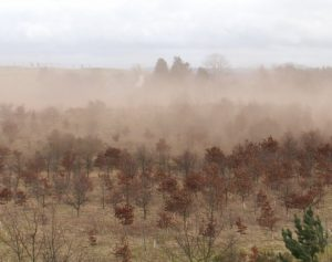 The Implacable Desertification of Planet Earth