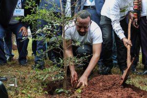 Etiopía planta 350 millones de árboles en doce horas