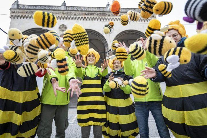 Desaster & Lichtblick für Bienen und Insekten