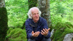 Ernst Zürcher: Los árboles, los hombres y el cosmos [1/5]