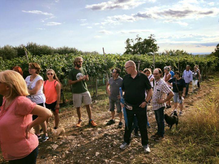 Cascina AlbaTerra, una fattoria sociale e comunità agricola in festa