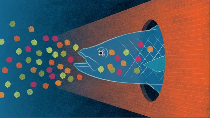 The Threat To Life From Ocean Microplastics