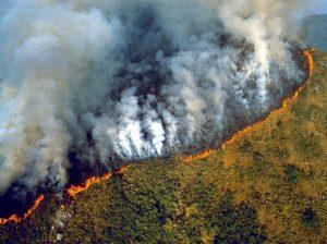 Anche l'Africa brucia. Forse più dell'Amazzonia