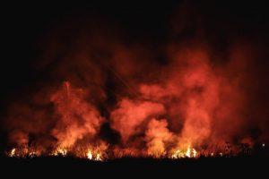 Amazonie : la nuit en flammes