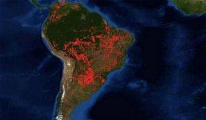 Incendios en la Amazonia: OTCA, el bombero ignorado