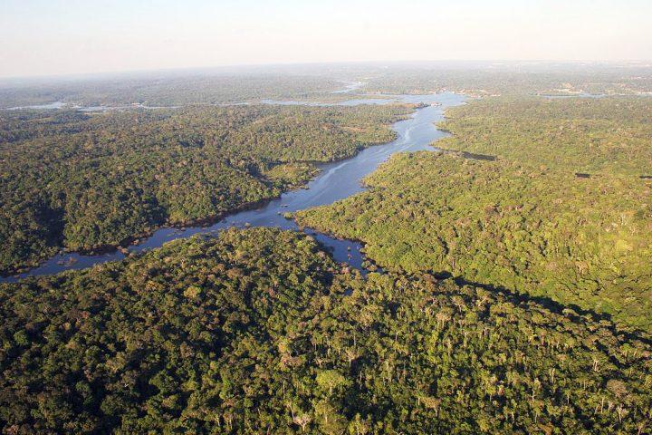 Por que ateus podem rezar pelo Sínodo para a Amazônia