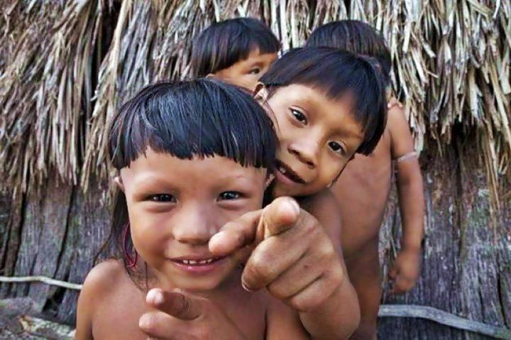 """Foresta pluviale amazzonica, vicini al """"punto di non ritorno"""""""