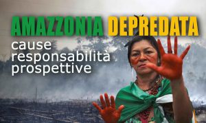 Amazzonia depredata. Cause, responsabilità, prospettive