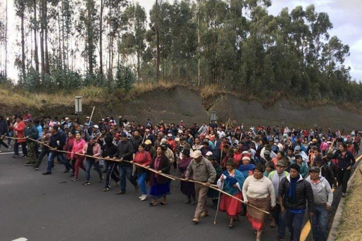 Ecuador: la Amazonía se pronuncia