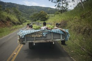 'Não tem como pensarmos em um modelo agroexportador justo', diz pesquisadora