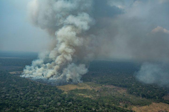 Amazzonia: abbiamo perso un'area equivalente a 1,4 milioni di campi di calcio
