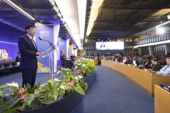 La cooperazione globale e le tecnologie rispettose del clima sono fondamentali per affrontare le perdite e gli sprechi alimentari a livello globale