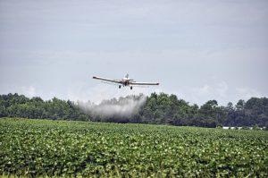 Agrotóxicos: un fallo contrario al derecho ambiental y a las pruebas científicas