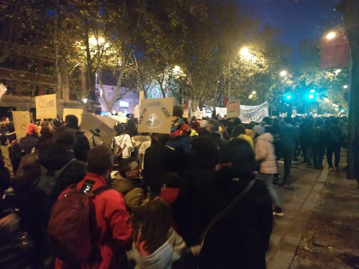 Manifestación por el Clima Madrid_Susana (3)
