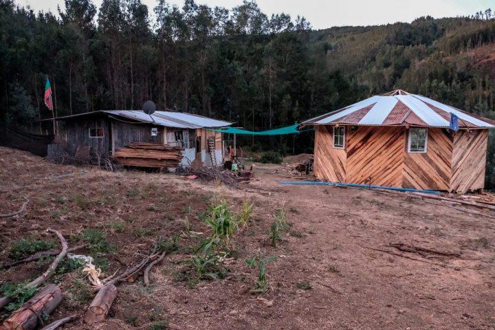 Da Santiago a Bajo Pellahuen: la storia di una famiglia Mapuche che ha cambiato vita
