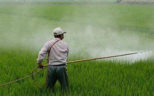 Conselho Nacional de Saúde pede que STF declare inconstitucional subsídio aos agrotóxicos