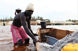 Senegal: il bruciore del sale