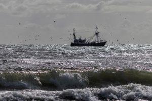 Pandemia e crisi climatica: siamo tutti sulla stessa barca
