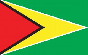 Corte de Guyana dictamina que tiene competencia en caso electoral