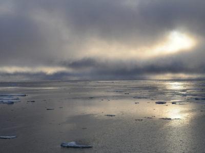 Arctic Ocean the Ocean of silk by Alexandra Loginova